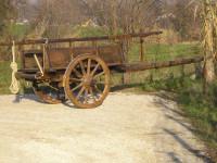 carro agricolo, etnografico