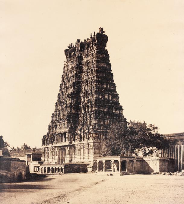 2007BL8892_linnaeus_tripe_gopuram