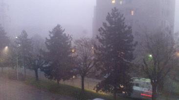 nebbia, sera, dalla finestra.