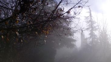 nebbia