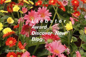 riconoscimento blog